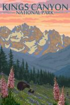 Kings Canyon National Park - Bear Family and Spring Flowers (9x12 Art Print, Wall Decor Travel Poster)