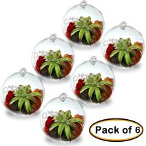 "CYS EXCEL (Pack of 6 3.5"" Tall x 3"" Wide, Plant Terrarium, Glass Orbs, Air Plants, Tea Light Candle Holders, Succulents Moss Miniature Garden Planters Home Décor"