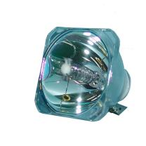 Lytio Economy for InFocus SP-LAMP-003 Projector Lamp (Bulb Only) INFSPL003