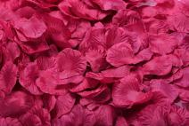 ocharzy 1000pcs Silk Rose Petals Wedding Flower Decoration (Purplish Red)