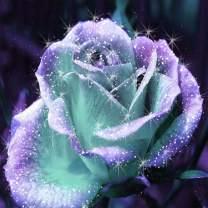 Crystal Flowers 5D DIY Diamond Paintings by LUHSICE, 45x45cm