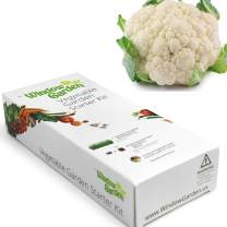 Window Garden - Cauliflower Vegetable Starter Kit - Grow Your Own Food. Germinate Seeds on Your Windowsill Then Move to a Patio Planter or Vegetable Patch. Mini Greenhouse System - Easy. (Cauliflower)