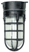 Woods L1706BLK Vandal Resistant 150W Incandescent Security Light, Ceiling Mount, Hammered Black