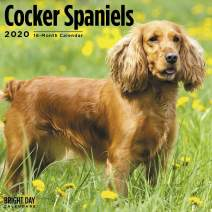 2020 Cocker Spaniels Wall Calendar by Bright Day, 16 Month 12 x 12 Inch, Cute Dogs Puppy Animals Adorable