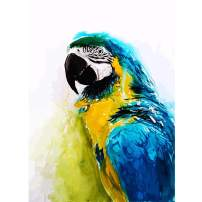 DIY Full Drill Square 5D Diamond Painting by Number Kit, Cute Parrot Rhinestone Embroidery Cross Stitch Pictures Arts Craft for Home Wall Decor