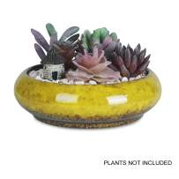 7.3 inch Round Succulent Planter Pots with Drainage Hole Bonsai Pots Garden Decorative Cactus Stand Ceramic Glazed Flower Container (Yellow)