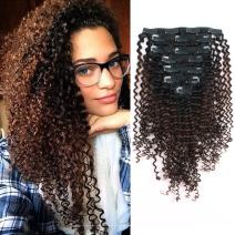 Sassina Ombre Kinky Curly Clip in Human Hair Extensions for African American Black Women Double Wefts 3C 4A Afro Kinky Curly Clip in 7Pcs-120G Ombre NaturalBlackChocolater Brown TN4 14Inch