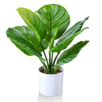Kazeila Artificial Calathea Orbifolia Plant 15.75 Inch Small Fake Prayer Plant,Faux Desk Plant in Pot for Indoor Outdoor Home Office Any Room Decor,Perfect Housewarming Gift