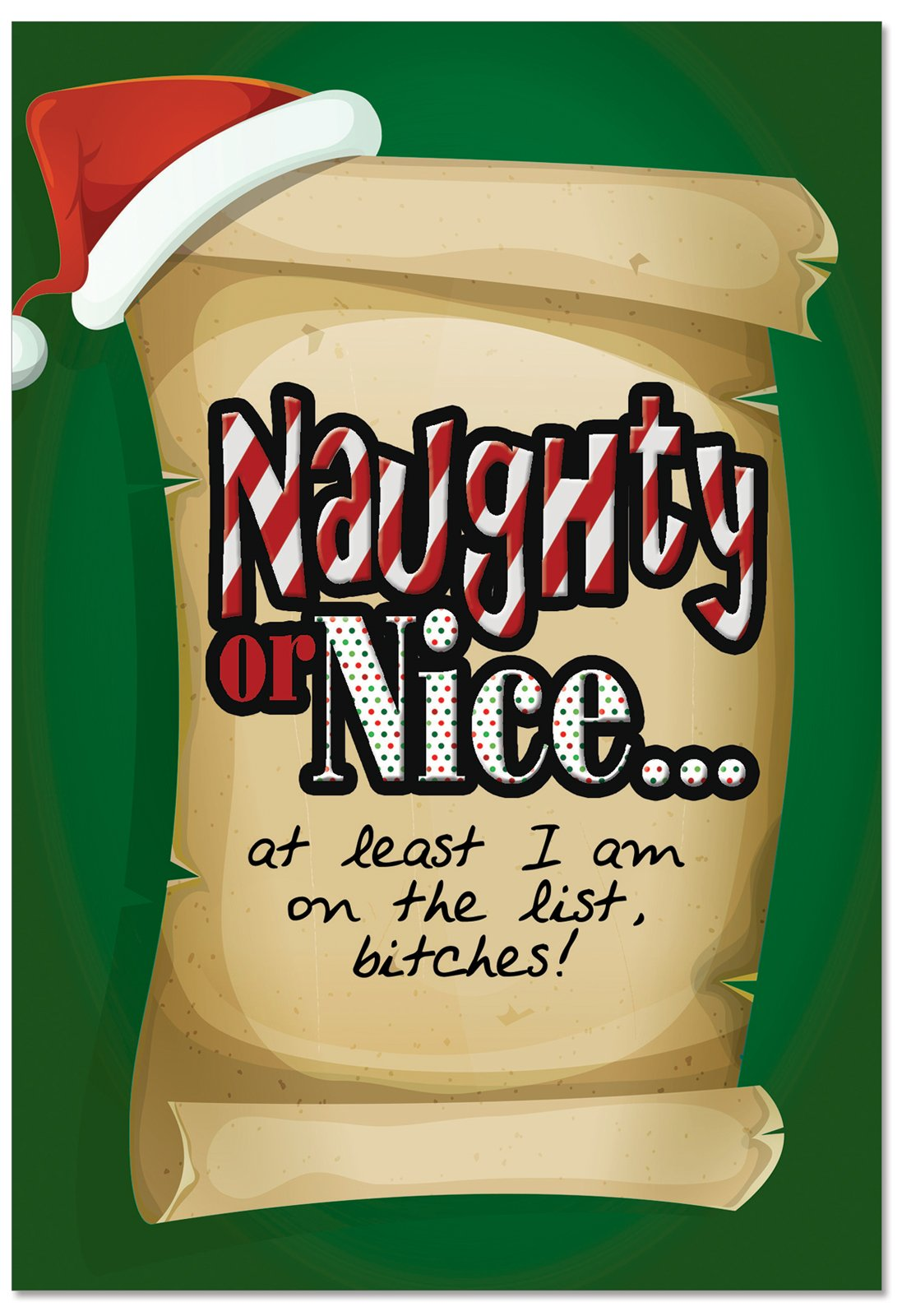 12 'On the List' Boxed Christmas Cards with Envelopes 4.63 x 6.75 inch, Funny Naughty Nice List Christmas Notes, Hilarious Cartoon Holiday Notes, Silly Christmas Stationery B2536XSG