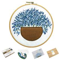 Embroidery Kits for Beginners, Adults Embroidery Projects, Handmade Embroidery with Flower Pattern (Blue)