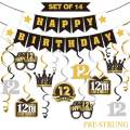 LINGTEER 12 Birthday Decorations Set - Happy 12th Birthday Party Swirls Streamers Crown Glasses Gift Box Sign | Happy Birthday Garland Banner Cheers to Twelve Years Old Birthday Party Supplies