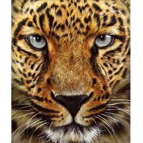 MXJSUA 5D DIY Diamond Painting Kit by Number Full Drill Round Beads Crystal Rhinestone Picture Supplies Arts Craft Wall Sticker Decor-Cheetah 12x14in