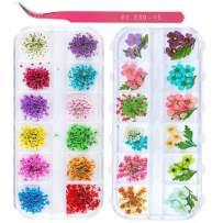 2 Boxes Nail Art Dried Flowers,UNIME 24 Colors Dry Flowers Mini Real Natural Flowers Nail Art Supplies 3D Applique Nail Decoration Sticker for Tips Manicure Decor Accessories,Gypsophila Flowers