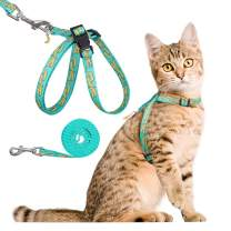 PUPTECK Cat Harness and Leash Set - Kitten and Puppy with Exquisite Watermelon Pendant, Escape Proof for Cat Walking, Adjustable and Durable