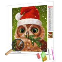 ANMUXI 5D Diamond Painting Kits Full Square Drills for Adults 30X40CM Christmas Hat Owl Animals Scenery Paint with Diamonds Art for Stress-Relief & Home Decor
