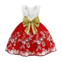 Baby Kids Girl's Dress Toddler Birthday Cute Big Bowknot Christening Dress 0-10 Years