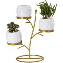 FLOWERPLUS Small Owl Succulent Planter Pots, 3 Pack 2.75 Inch White Ceramic Decorative Cactus Flower Plant Pot with Tree Tier Metal Stand for Indoor Outdoor Home Office Garden Kitchen Décor (3PP024)