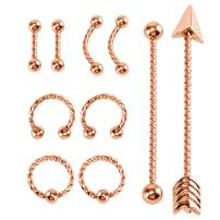 BodyJ4You 10PC Body Piercing Set 14G 16G Tragus Eyebrow Nose Ring Lip Ear Industrial Steel Jewelry