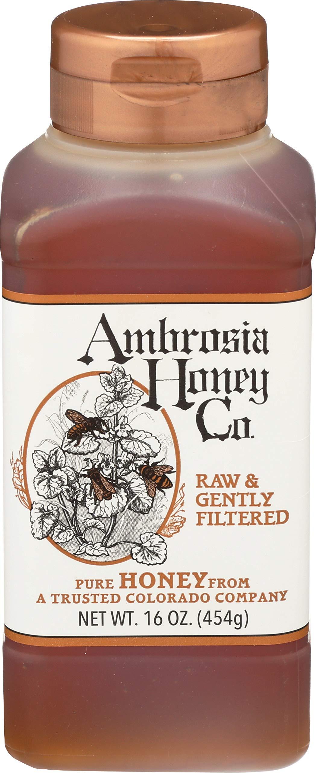 AMBROSIA HONEY CO. Gently Strained Honey, 16 oz. Bottle (Pack of 4) | Natural Sweetener, Sugar Alternative | 100% Pure Honey | US Honey | Liquid Sweetener