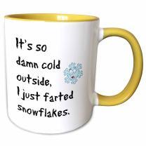 3dRose mug_200705_8 Mug - Its So Damn Cold Outside I Just Farted A Snowflake, 11 oz, Yellow