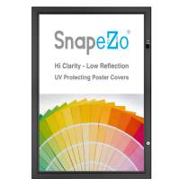 SnapeZo Poster Case 16x20 Inches, Black 1.8 Inch Aluminum Profile, Locking Poster or Menu Case, Lockable Case, Wall Mounting, Professional Series