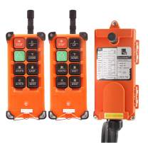 NEWTRY 8 Buttons Wireless Crane Remote Control 24V 2 Transmitters Industrial Channel Electric Lift Hoist Radio Switch Receiver (F21E1B Transmitter + DC 24V Receiver)