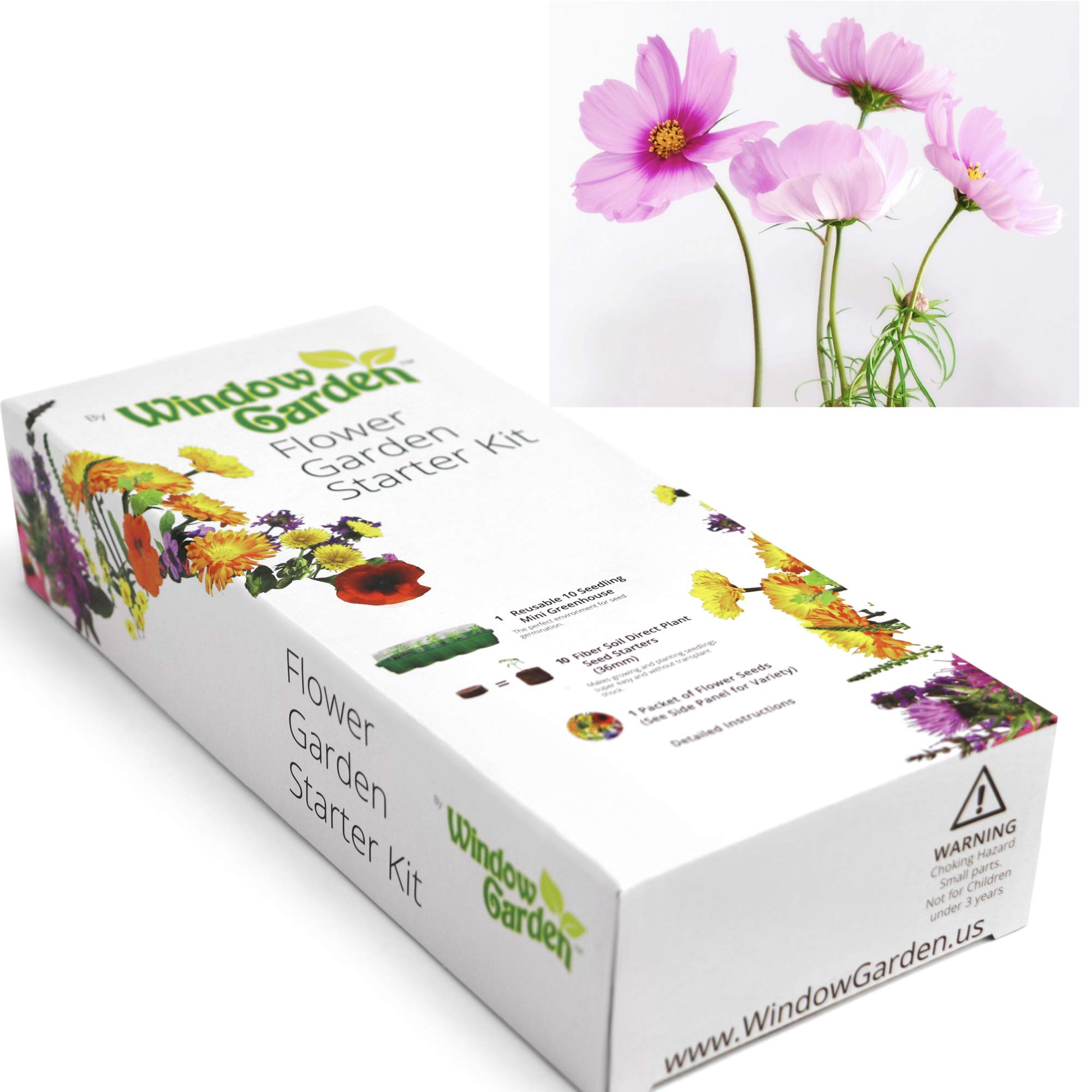 Window Garden - Cosmos Flower Starter Kit - Grow Your Own Beauty. Germinate Seeds on Your Windowsill Then Move to Patio Planter or Landscape. Mini Greenhouse System Make's it Foolproof, Easy and Fun.