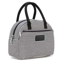 Plambag Insulated Lunch Tote Bag, Lunch Box Organizer Container for Men, Women & Kids(Blue & White Stripes)