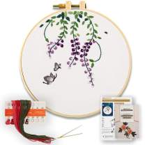 Akacraft DIY Embroidery Starter Kit, Cotton Fibric with Stamped Pattern, 6 inch Plastic Embroidery Hoop, Color Threads, and Needles, Chinese Traditional Flowers Series-Wisteria