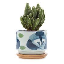 T4U 3 Inch Ceramic Japanese Style Serial No.7 Succulent Plant Pot/Cactus Plant Pot Flower Pot/Container/Planter White