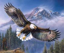 DIY 5D Diamond Painting Kit - Full Drill Crystal Rhinestone Embroidery Paint with Diamonds Arts Craft for Home Wall Decor - Eagle 12x16inch