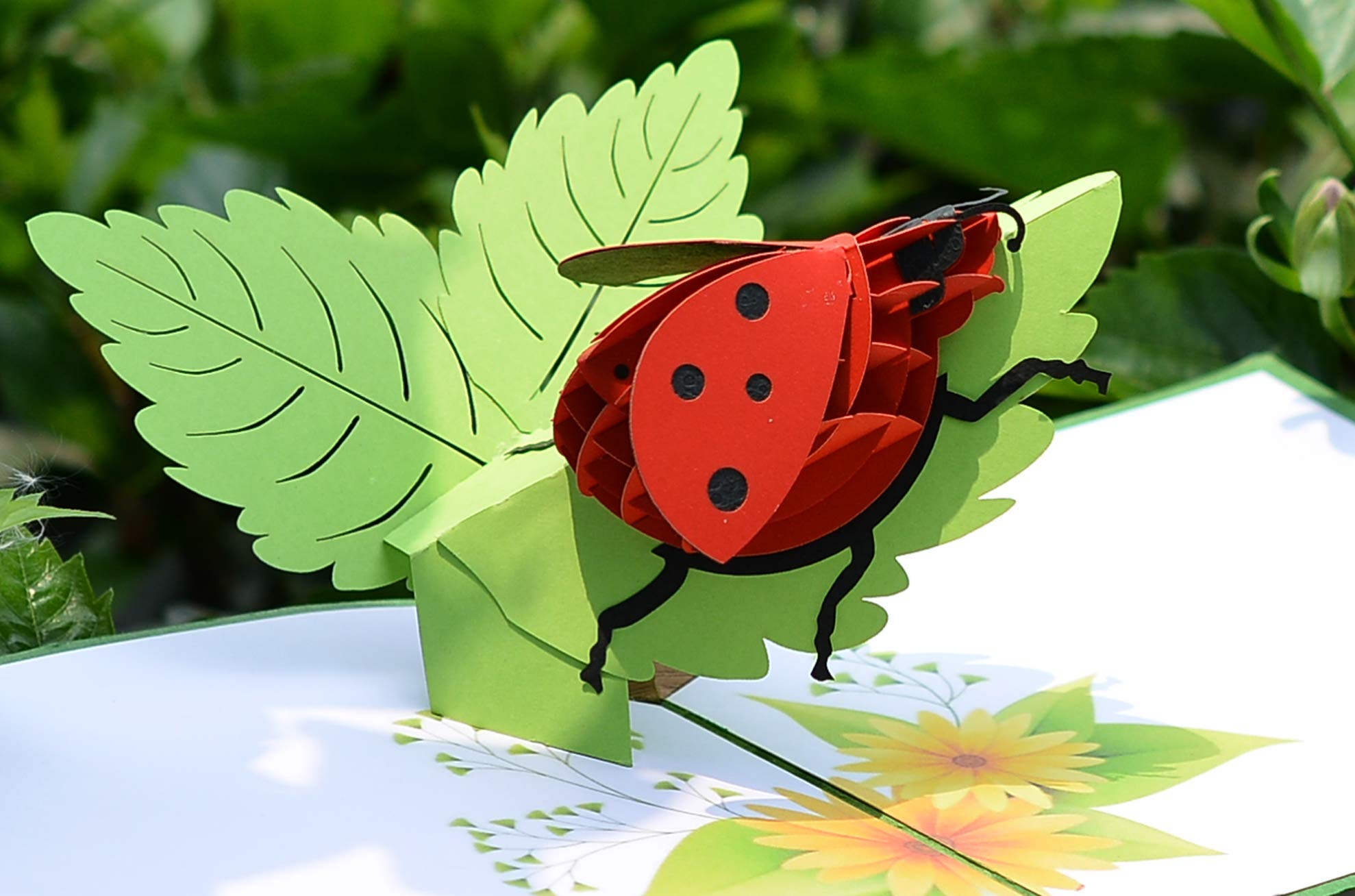 CUTPOPUP Mothers Day Pop Up Card with Ladybug- Sophisticated Design, Highly Handmade Skilled- Great Gift for Kids & Animal Lover in Birthday, Anniversaries,Wedding- Includes elegant envelope