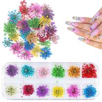 1 Box Dried Flowers for Nail Art, UNIME 12 Colors Dry Flowers Mini Real Natural Flowers Nail Art Supplies 3D Applique Nail Decoration Sticker for Tips Manicure Decor (Gypsophila)