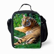 Tiger Lunch Bag Lunch Box for Kids Boys Girls