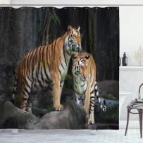 """Ambesonne Animal Shower Curtain, Tiger Couple in The Jungle on Big Rocks Image Wild Cats in Nature Image Print, Cloth Fabric Bathroom Decor Set with Hooks, 75"""" Long, Ginger Grey"""