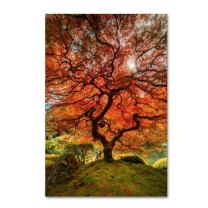 The Tree Vertical by Moises Levy, 12x19-Inch Canvas Wall Art