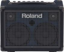 Roland KC-220 Battery-Powered Stereo Keyboard Amplifier, 30-Watt (15W + 15W)