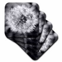 3dRose CST_51762_1 Black and White Dandelion Puff Soft Coasters, Set of 4
