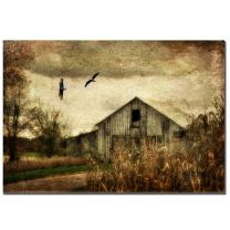 Wings of Change by Lois Bryan, 16x24-Inch Canvas Wall Art