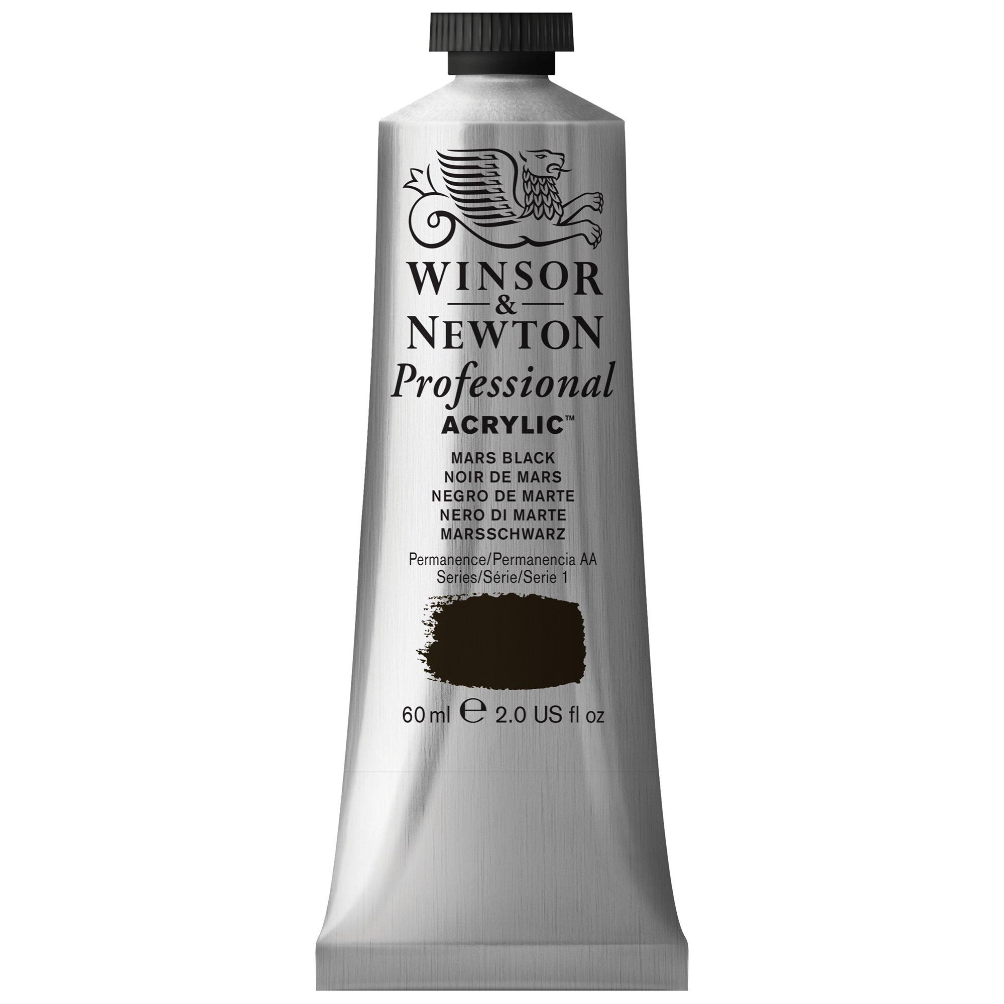 Winsor & Newton Professional Acrylic Color Paint, 60ml Tube, Mars Black