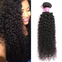 Brazilian Kinky Curly Virgin 1 Bundle Hair Brazilian Curly Hair 10A 100% Unprocessed Brazilian Kinky Curly Virgin Hair Extensions (10 Inch)