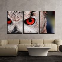 """wall26 - 3 Piece Canvas Wall Art - Closeup of an Owl with Red Eyes - Modern Home Decor Stretched and Framed Ready to Hang - 24""""x36""""x3 Panels"""