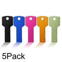 JUANWE 5 Pack 1GB USB Flash Drive USB 2.0 Metal Thumb Drives Jump Drive Memory Stick Key Shape - Black/Blue/Pink/Gold/Green(1GB,5 Mixed Color)