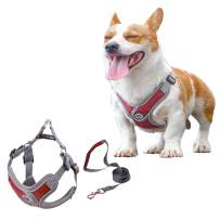 Xqpetlihai Dog Harness No Pull No Choke with Dog Leash Reflective Adjustable Outdoor Vest Padded Breathable Mesh Comfort with 2 Leash Attachments Easy Control for Small Medium Dogs(XS-RED)
