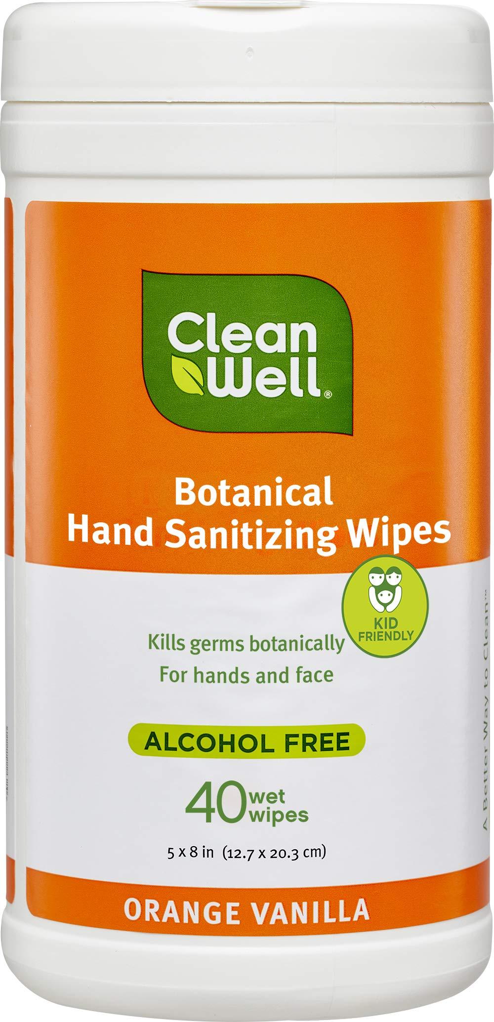 CleanWell Botanical Hand Sanitizer Wipes, Orange Vanilla, 40 count (1 PK) - Alcohol Free, Antibacterial, Kid Friendly, Plant-Based, Nontoxic, Cruelty Free, Moisturizing Formula