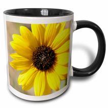 3dRose 191548_9 Mug, 15oz, Black/White