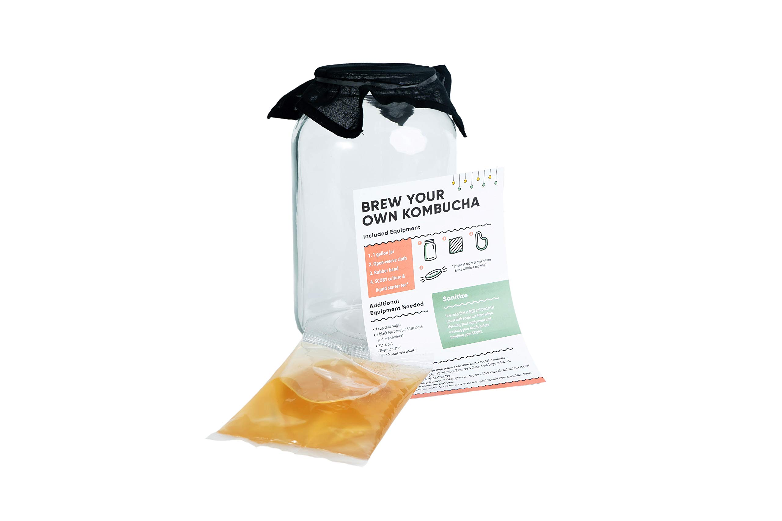 Craft A Brew For Home Includes Fresh Kombucha SCOBY Starter, 1 Gallon Fermenting Jar, Cloth Cover, Brewing Guide, Basic Kit