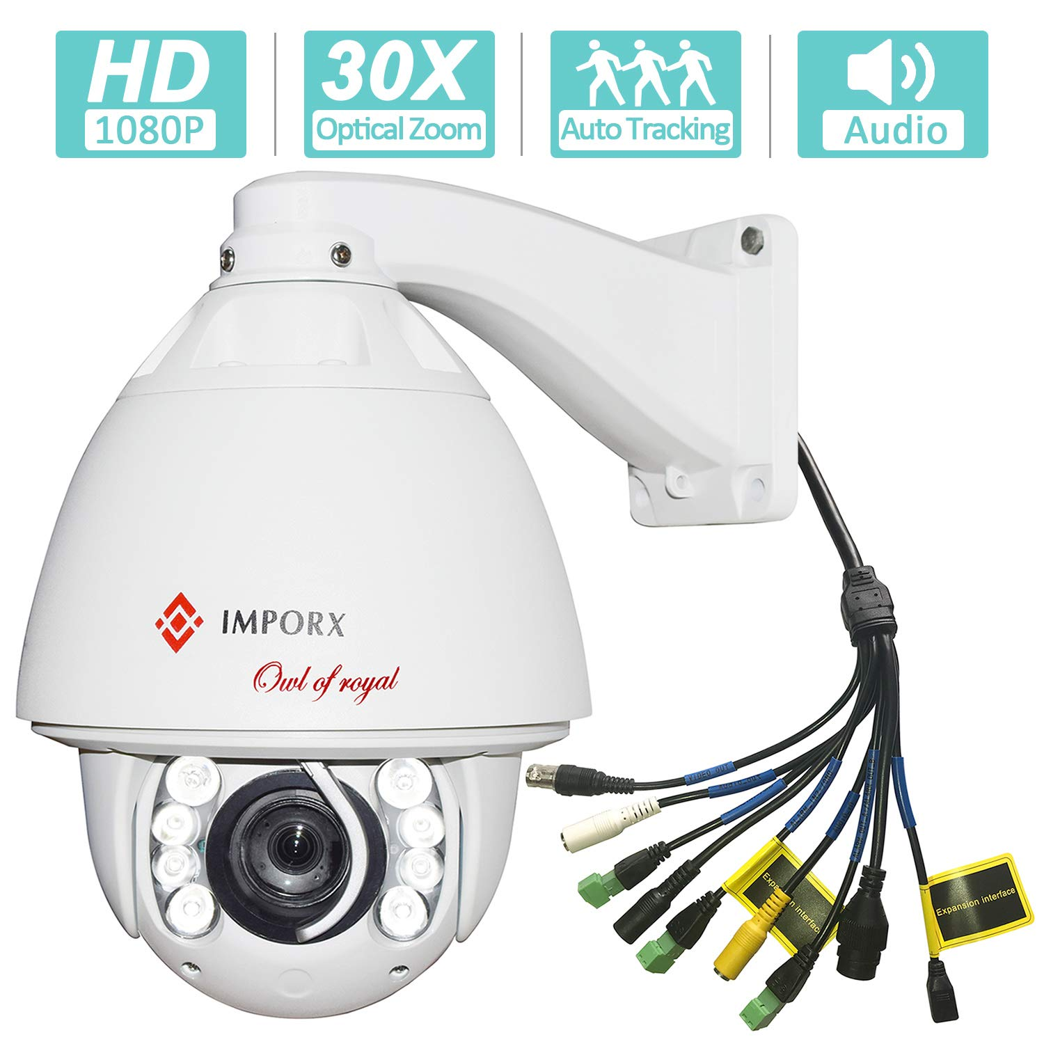 IMPORX Auto Tracking PTZ IP Camera Outdoor - 30X Optical Zoom 1080P HD Resolution - High Speed H.265 ONVIF Dome Camera, 500ft Night Vision, Support Micro SD Card and P2P(Audio & Alarm Version.)