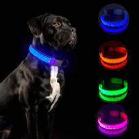 Tekkery Light Up Dog Collar, Glowing Pet Dog Collar for Night Safety with USB Rechargeable Super Bright LED Dog Flashing Collar for Small Medium Large Dogs
