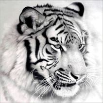 UPMALL Diamond Painting Kits for Adults,5D Diamond Embroidery Pictures Arts Craft for Home Wall Decor Black White Tiger 11.8 x 11.8 Inch